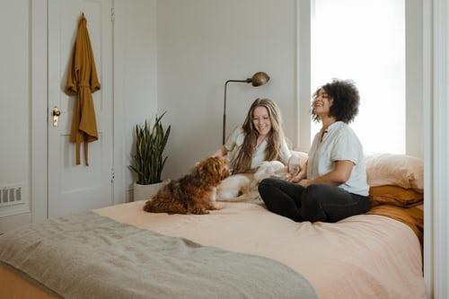 5 bonnes idées pour une chambre d'amis