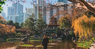 Transformez votre terrasse en une oasis urbaine